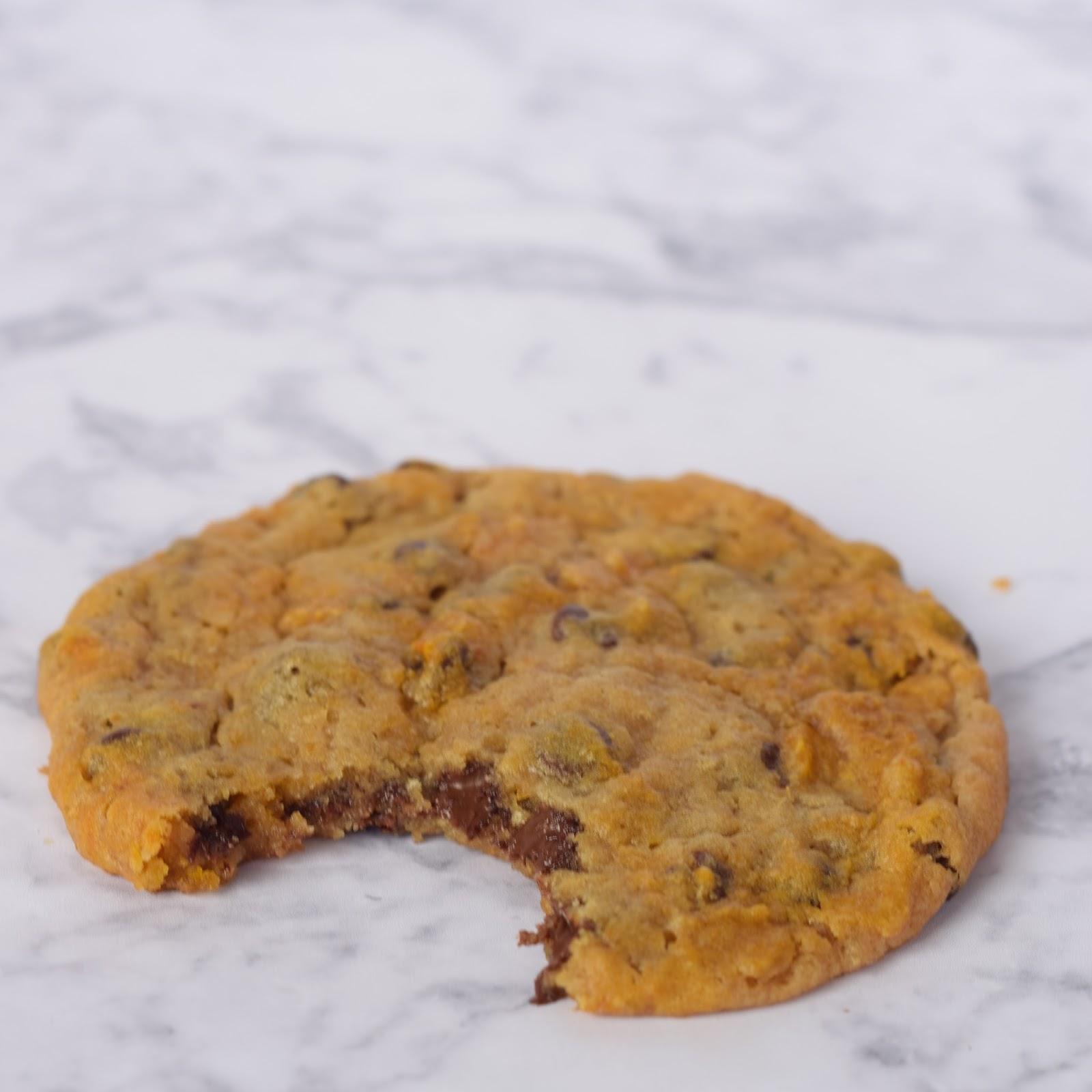the best chocolate chip pumpkin recipe