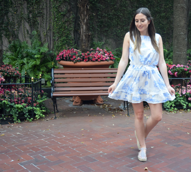 Blue & White Dress Blog
