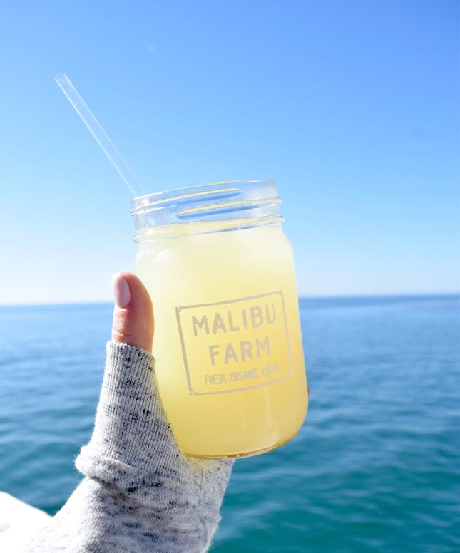 Where To Eat In Malibu