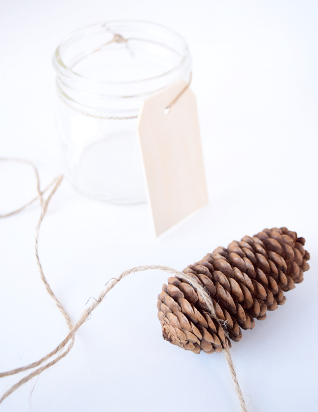 DIY Holiday Pinecone Card