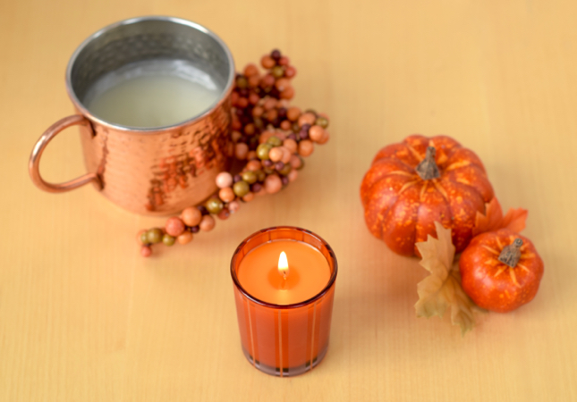 The Best Fall Scented Candle by nest fragrances