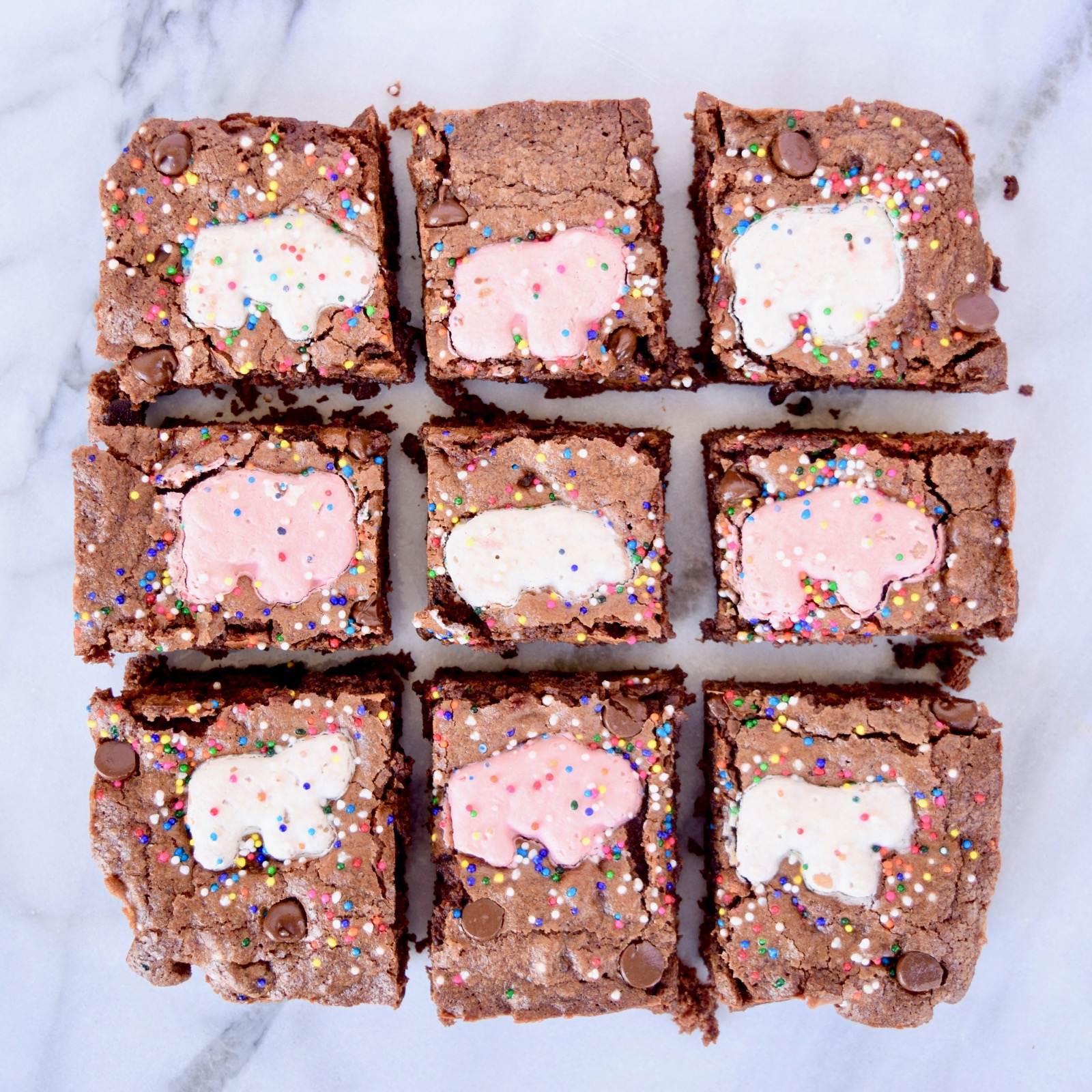 1 Step Circus Cookies Brownies