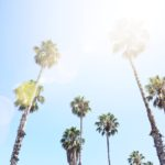 Travel Guide: Santa Monica
